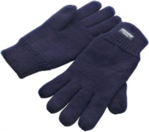 Handschuh Thinsulate